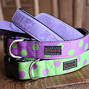 Scrufts Lily Apple Spotty Dog Collar And Velvet Lead