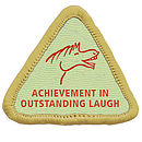 Funny Iron On Merit Badge Gift For Adults