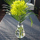 Mini Lightbulb Vase