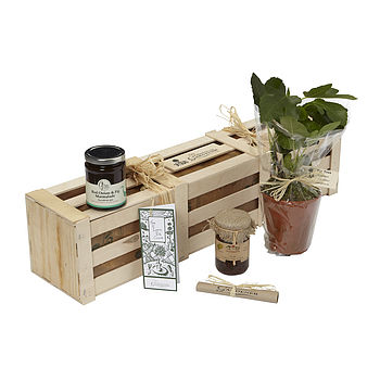 The Fig Gift Crate