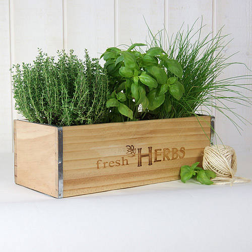 Fresh Herbs Window Box In Natural Wood By Plant Theatre