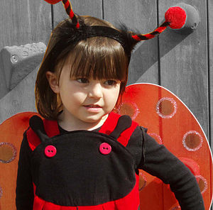 Girls Ladybird Dress Up Costume