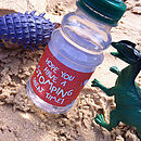 Pack Of Ten Dinosaur Water Bottle Wraps