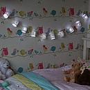 Personalised Paper Lantern Lights