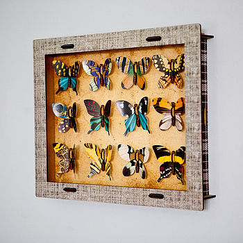 Butterfly Collection Box