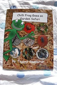 Chilli Frog Goes On Garden Safari - toys & games
