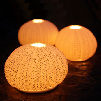 Urchin Tea Light Holders
