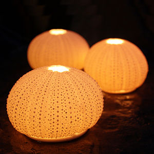 Urchin Tea Light Holders - candles & candlesticks