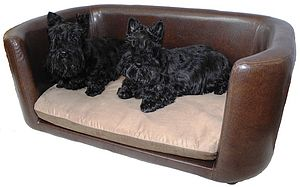 Beaumont Large Pet Bed - dogs
