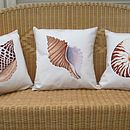 Limited Edition Junonia Shell Print Cushion