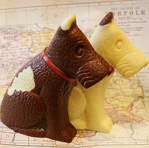 Handmade Chocolate Stanley Dog - chocolates