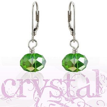 Crystal Sterling Silver Clasp Earrings