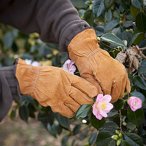 Gardening Gloves - potting shed essentials