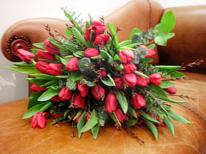 'You're So Du Jour' Tulip Bouquet - flowers, plants & vases