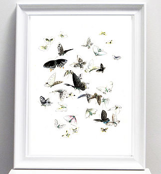Illustrated Butterflies Art Print Or Canvas