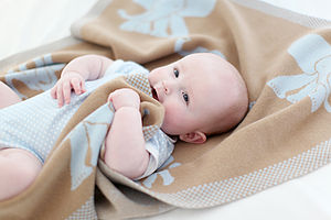 'Precious Little Bundle' Cashmere Blanket - baby care