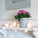 Clear Daisy Light Garland