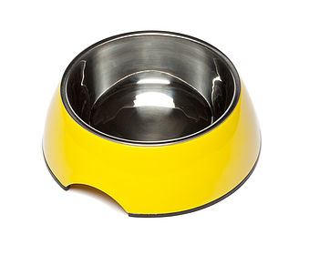 Yellow Round Dog Bowl