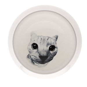 Echo Cat Bowl - cat treats & food items