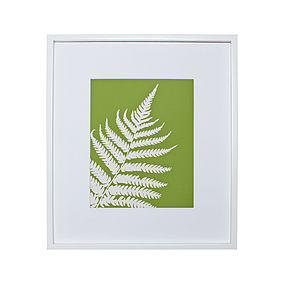 Fern Botanical Mounted Fine Art Print
