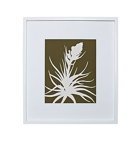 Tillandsia Botanical Mounted Fine Art Print - posters & prints