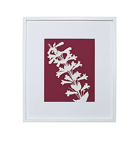 Penstemon Botanical Mounted Fine Art Print