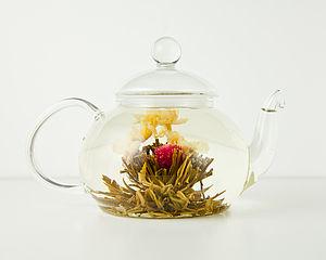 Three Flower Burst Chinese Green Tea