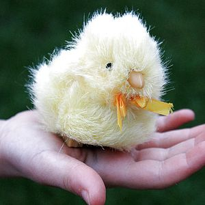 Toy Chirping Chick - soft toys & dolls