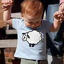 Baby's T Shirt With Shaker The Sheep