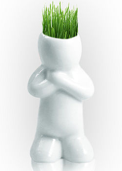 Ceramic Grass Head Grower