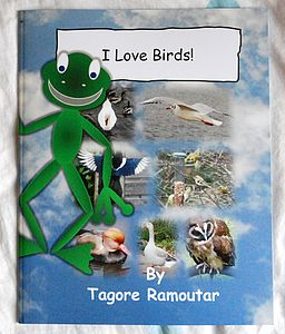 'I Love Birds' Book - toys & games