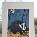 Nocturnal Animals Mounted Print