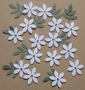 White Daisy Embellishments - leisure