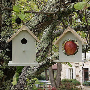 Bird Nesting Box & Apple Feeder Set - for garden wildlife