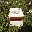 Wooden Nesting Box With Seeds