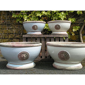 Kew Royal Botanical Gardens Bowl - shop by price