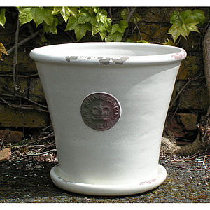 Kew Botanic Gardens Tapered Pot With Saucer - pots & windowboxes