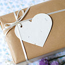 Plantable Wildflower Paper Heart Gift Tag Set
