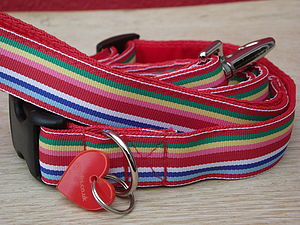 Brighton Pride Dog Collar And Lead