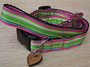 Sweet Almondine Dog Collar And Lead - pet collars & leads