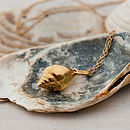 Gold Mousehole Shell Necklace