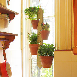 Four Pot Hanging Plant Holder - pots & planters