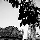 Paris Eiffel Tower Black and White