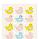 Swimming Ducks pastels