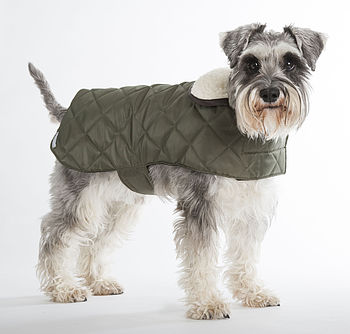 Olive Quilted Dog Coat