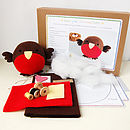 Christmas Robin Craft Kit