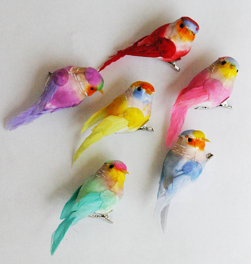 Set of six feather bird clip decorations by petra boase for Artificial birds for decoration