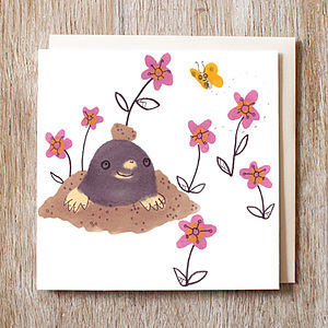 Mole And Butterfly Birthday Card