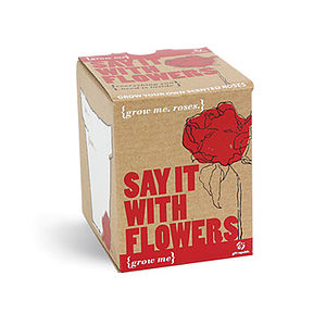 Grow Me 'Say It With Flowers' Seeds - gifts for her