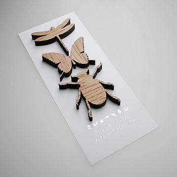 Bugs and Beasties: Oak Dragonfly, Butterfly and Beetle Magnetic Icon